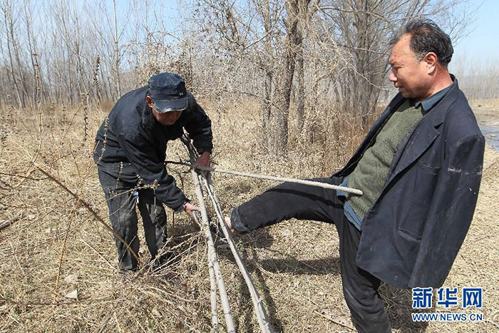 blind-man-amputee-plant-trees-china-4