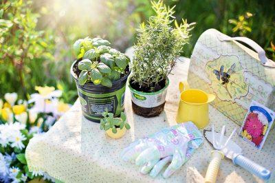 24 Simple DIY Gardening Tips And Tricks