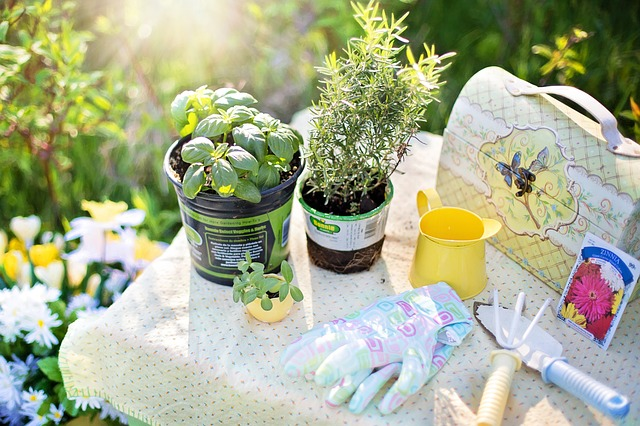 24 Simple DIY Gardening Tips And Tricks