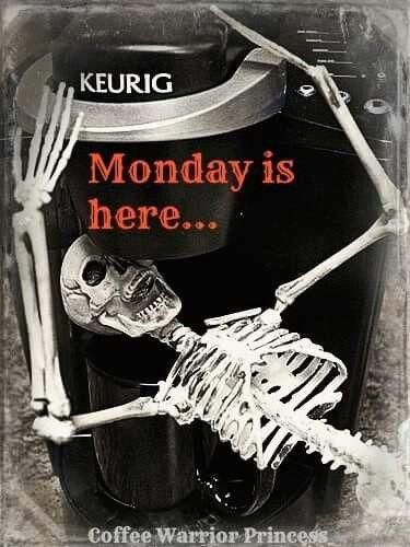 Monday Meme 15