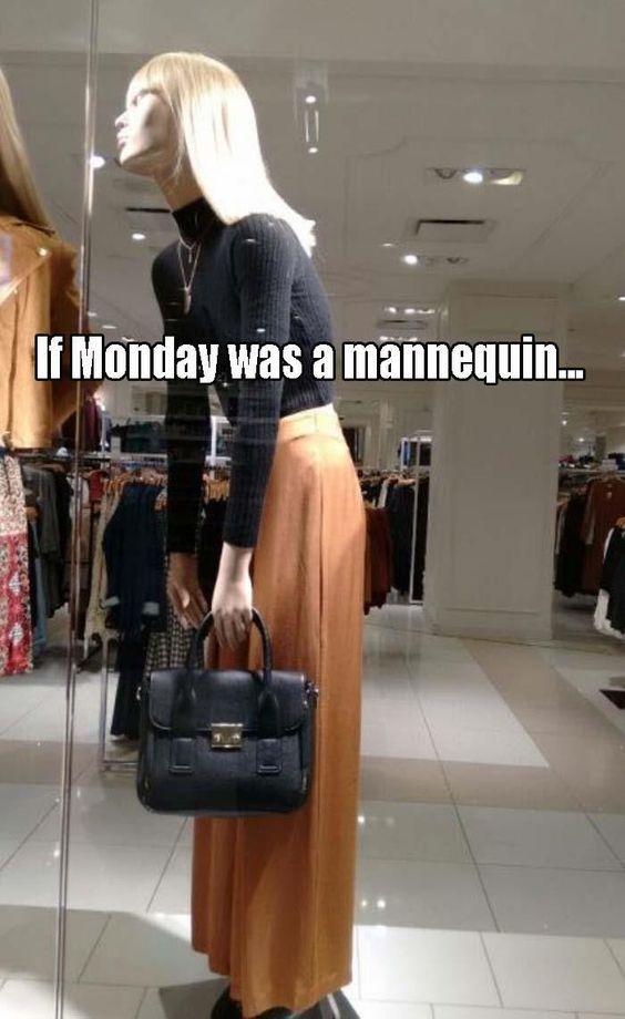 Monday Meme 16