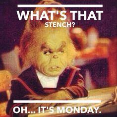 Monday Meme 22