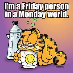 Monday Meme 27